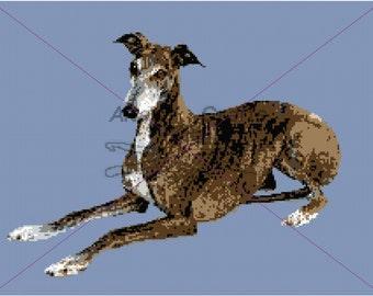 Greyhound Blanket Graph Pattern