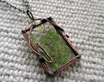 real plant necklace, botanical, dried plant, terrarium necklace, copperplate, real moss necklace, handmade
