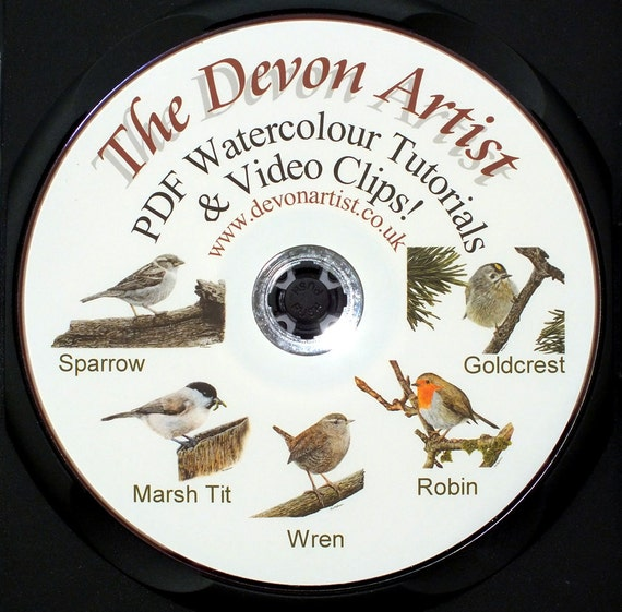 Learn to Paint in Watercolour, 5 PDF Tutorials and 5 Video Clips! Art Lessons, How To
