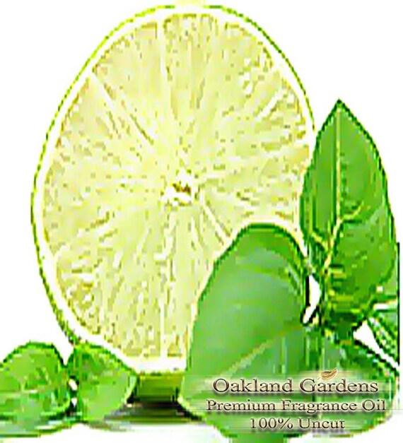 oz (30ml) x COOL CITRUS BASIL - Fragrance Oil - Blend of fresh, just ...
