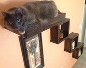 Set of Four: Three Floating Cat Cube Shelves and One Floating Cat Bed | Floating Cat Shelves | Cat Perch | Reclaimed Wood Shelves
