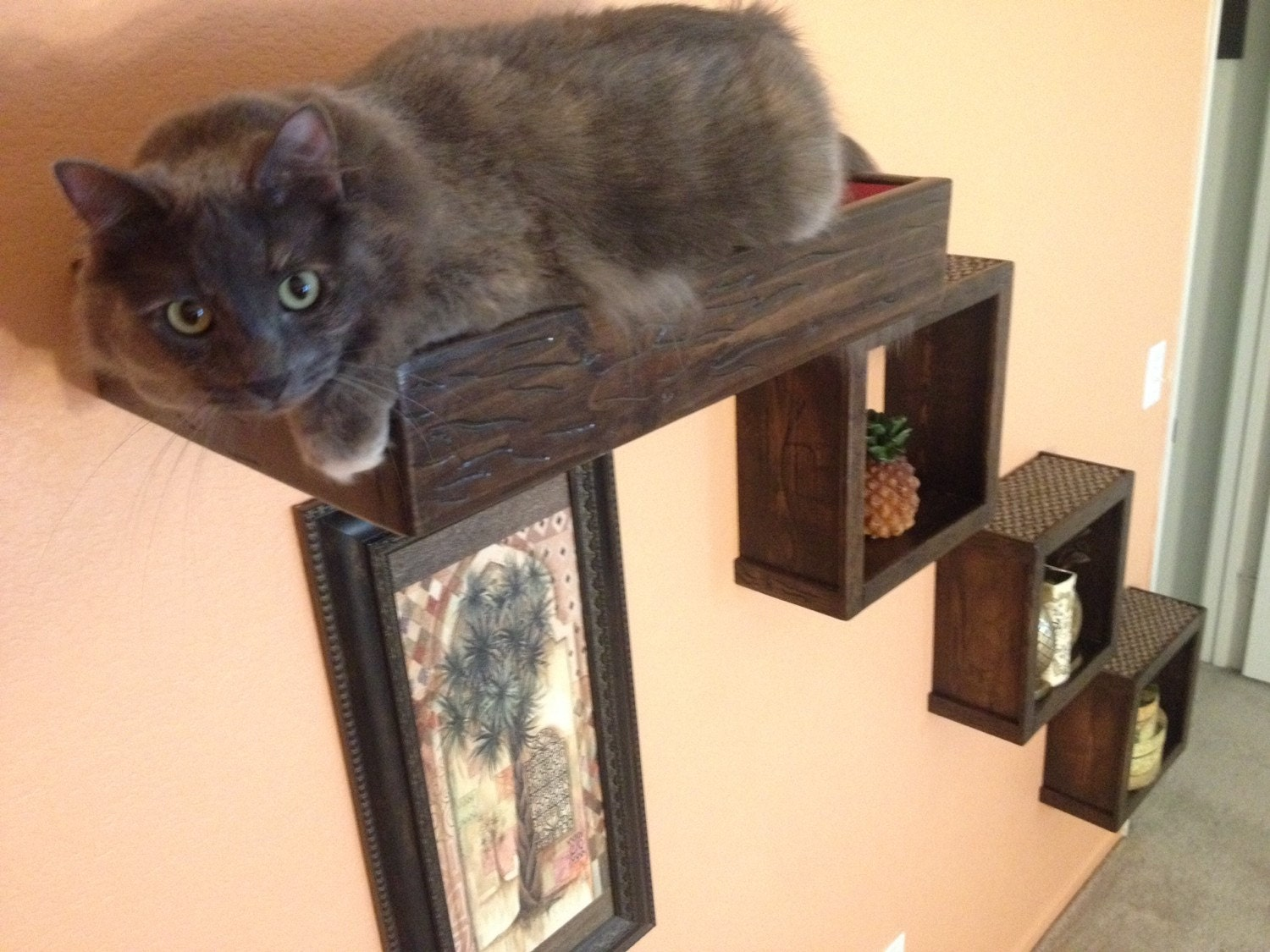 set of four three floating cat cube shelves and one floating On how to make cat shelves