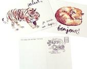 tiger or fox postcard