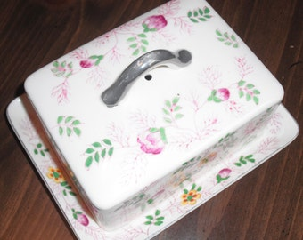 BUTTER DISH Made and Hand Painted in Japan - Silver Tone Handle - VINTAGE
