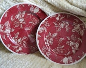 WAVERLY Dishes Set of Two Waverly Garden Room Fruit Toile Cranberry Color Tan Beige Leaves