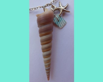 Necklace sea shell + anchor