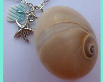 Necklace sea shell + starfish