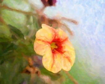 Oil Painting Print of Flower Macro Photography Print, Fine Art Photography,  Print, Wall Art