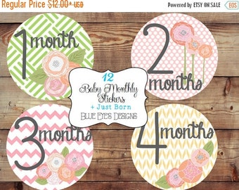 ON SALE Monthly Baby Stickers,Monthly Bodysuit Stickers,Monthly Baby Girl Stickers-Floral,Pink,Baby Age Stickers,Growth Stickers,Baby Sticke