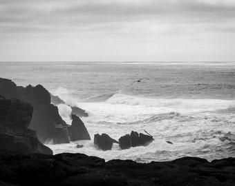 Oregon Coast Photograph, Black & White Print, Wall Decor, Pacific Northwest, Pacific Ocean, Landscape Photo, Fine Art Print, Canvas, Metal