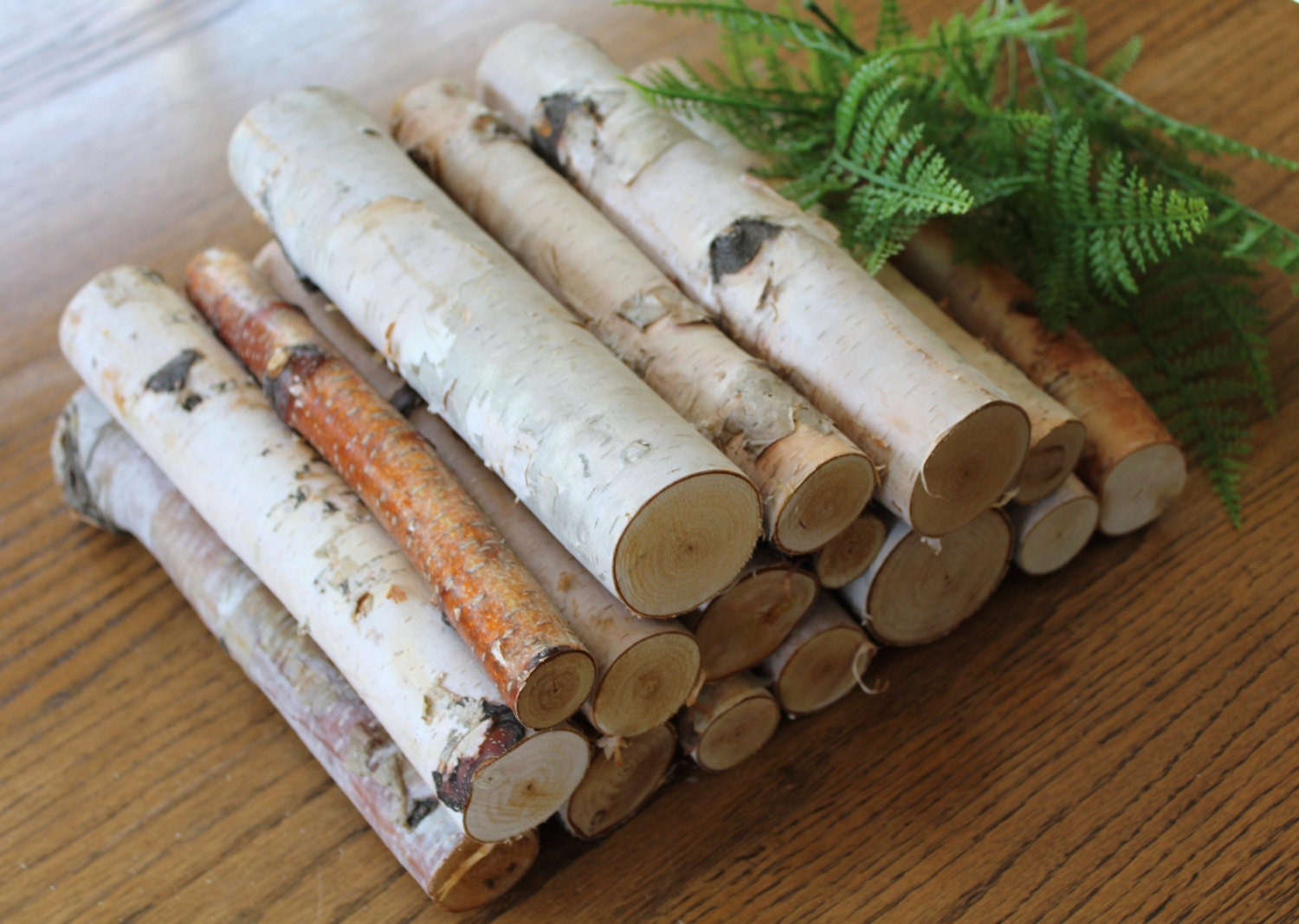 10 Birch Logs Decorative Birch Logs Box Full Of