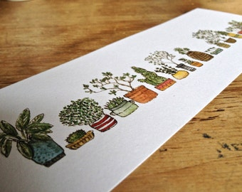 Potted Plants Colourful Illustration