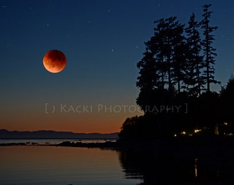 Blood Moon, Vancouver Island, Night Sky and Water, Eclipse, Harvest Moon