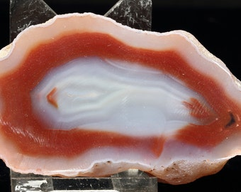 Beautiful Polished Red And Pale Blue Coyamito Agate Half Nodule