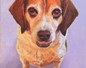 Commission/ 6 x 8/ oil on canvas/ dog