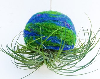 Hanging Air Plant Terrarium / Hand Felted Wool Bowl
