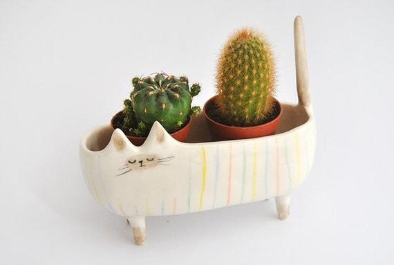 Bac à plantes chat