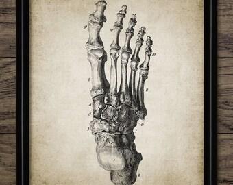 Foot Anatomy Print - Human Anatomy - Vintage Human Foot - Human Foot Illustration - Printable Art - Single Print #349 - INSTANT DOWNLOAD
