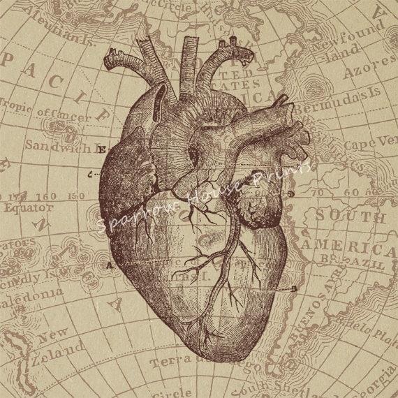 Antique Heart Diagram Vintage Wall Art by SparrowHousePrints