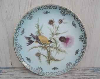 Lovely Vintage Bird Decorative Plate!
