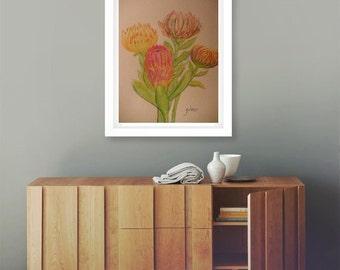 Proteas, Watercolor