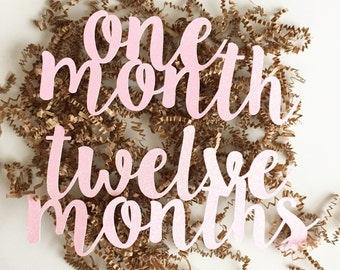 One Month to Twelve Month Cutouts for First Birthday Party, Baby Shower Gift, and Baby Photos.