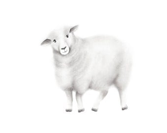 sheep art farm animal pencil drawing nursery art baby wall decor