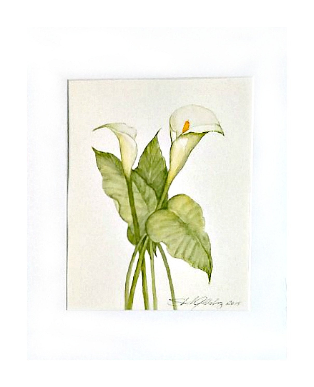 Calla Lily Original 11x14 Matted Ready To Frame