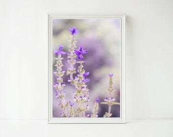Instant Digital Download - Purple Beauty
