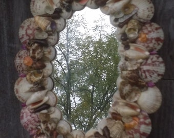15 inch oval seashell mirror