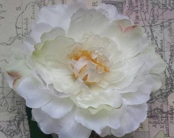 Single Cream Peony Hair Flower