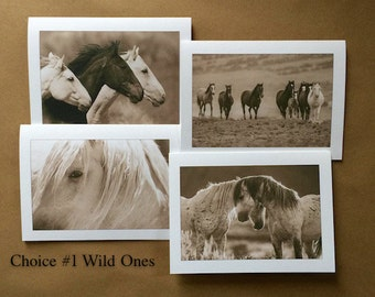 Set of 4 5x7 greeting cards