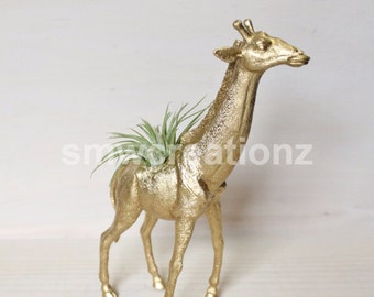 Custom Giraffe Planter with Air Plant Room Decor- Giraffe- Dorm Room Decor