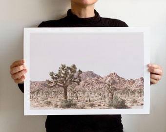 Art Print Dry Land No 5901, Landscape California, Joshua Tree National Park