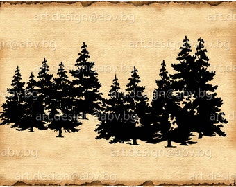 Vector CONIFERS, evergreen, Download, discount coupons, AI, PNG, eps, pdf, svg, jpg, forest, discount coupons