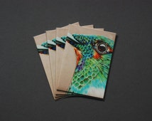 SALE* Prismacolor Drawing Hummingbird Gift Card Print