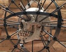 SKULL NOT INCLUDED Craniometer Real Human Skull Display Taxidermy Oddity Steampunk Sculpt skull, Replica Skull, Life Size Skull Stand