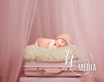 Newborn Baby Toddler Child Pink Canopy Fur Bed on Vintage Suitcase - Studio Digital Backdrop - Photography Background with Fur PNG Coverup