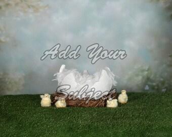 Digital Easter Photo Background Download Backdrop