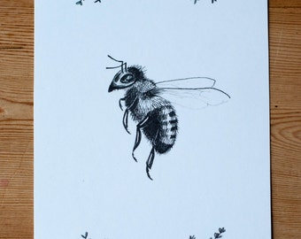 Bee Pen and Ink Art Print