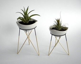 set of 2 geometric plant stands with a little white ceramic flower pots | himmeli | elegant geometric terrarium | metal brass soldered
