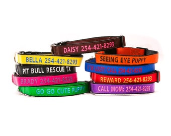 Custom Personalized Embroidered Nylon Dog Collar