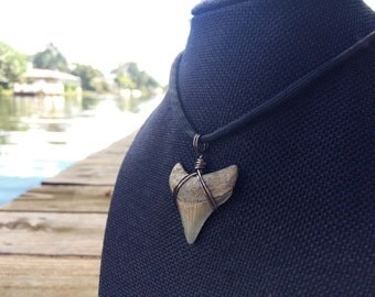 """Customizable ~1.25"""" Megalodon Shark Tooth Necklace: Adjustable 550 Paracord Necklace with Pre-wrapped Fossil Tooth"""