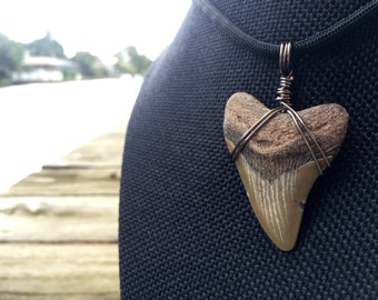 """Customizable ~1.5"""" Megalodon Shark Tooth Necklace: Adjustable 550 Paracord Necklace with Pre-wrapped Fossil Tooth"""