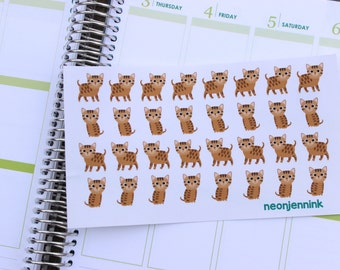 Bengal Kitten Stickers