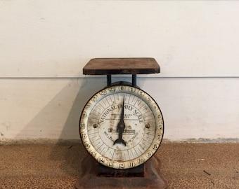 Vintage Kitchen Scale | National Family Scale | Vintage 1910 | Farmhouse Decor | Kitchen Decor