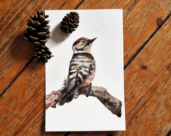 Lesser Spotted Woodpecker - Original Oil Painting - Bird Painting -