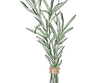 rosemary digital print, herb print, kitchen art, JPEG