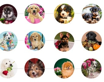 "Puppies Dogs 1"" Inch Bottle Cap Images Digital Download - 12 images for a 4 x 6 Sheet Size  Puppy, Dog, Canines"