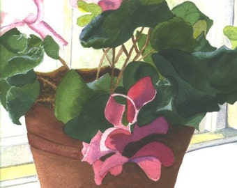 Pink Cyclamen prints and cards from an original watercolor painting